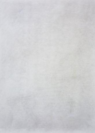 16.rys-szkic do studium kurzu na lisciach