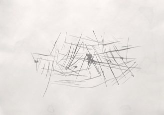 17-Sketch for the study of scratches on a wooden floor