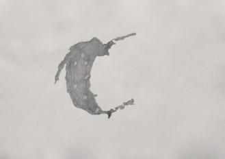 24-Sketch for the study of a petroleum on a asphalt