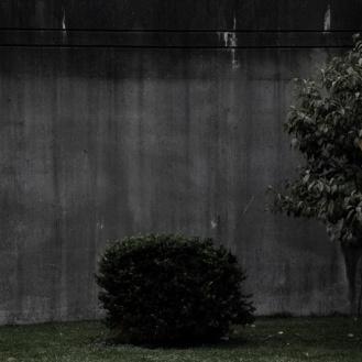 Otke Notive_nr13_fotografia_2011