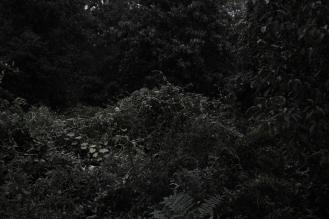 Otke Notive_nr9_fotografia_2011